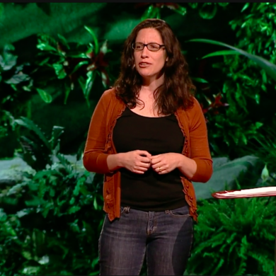 what do we learn in the womb? Annie Murphy Paul explains