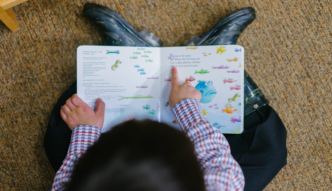 U.S. Case Raises Question: Is Child Literacy a Right?
